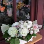 2011.05.23【注文したお花】トルコキキョウとアストランチアとスプレーバラのアレンジメント【用途】お祝いギフト