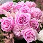 2011.03.17【注文したお花】 オーダーメイドギフト  【用途】お祝いギフト