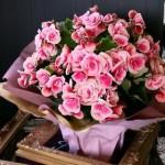 2011.05.17【注文したお花】ベゴニア(ボリアス)【用途】誕生日フラワーギフト