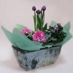 2009.05.16【注文したお花】春の寄せ鉢ギフト【用途】お祝い